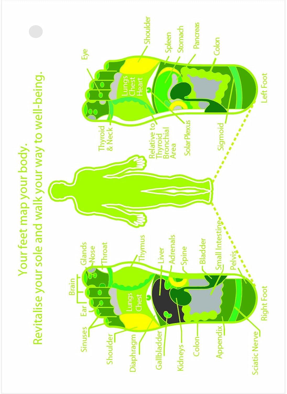 chaussures flip flop