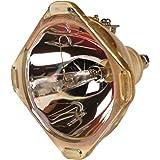 SONY XL-2400 純正バルブ+同等品ケース採用ランプユニット