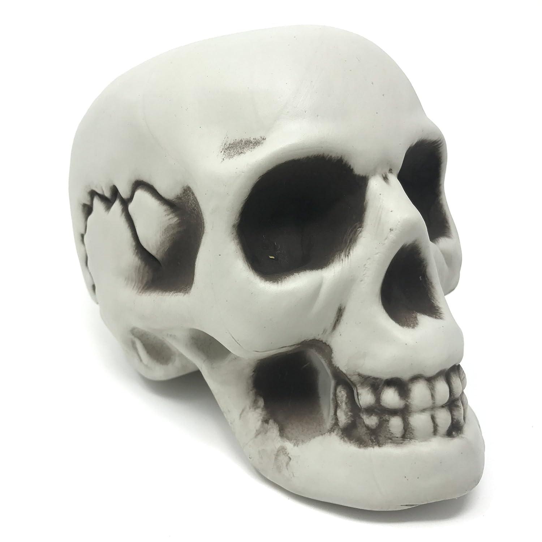 The Twiddlers Crâne déco Halloween – Prop Squelette de Table pour Les fêtes d'Halloween – Accessoire tête de Mort pour Les soirées Décoration