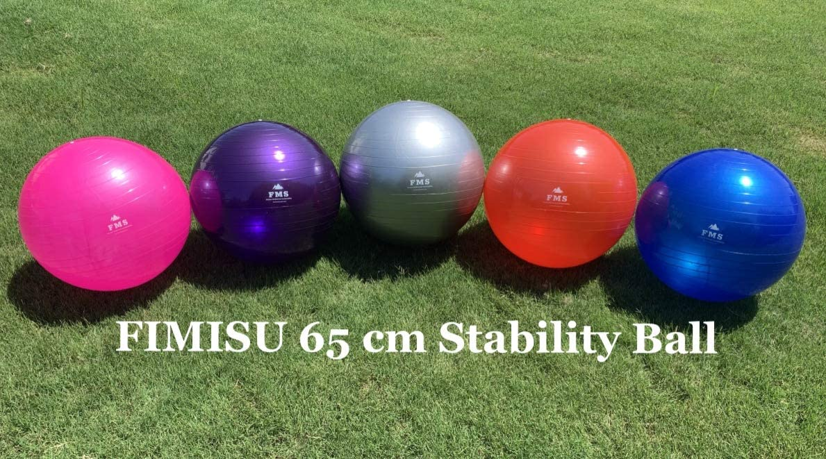 FIMISU 65cm Fitness Stability Ball Yoga Balance Ball Exercise Training Ball