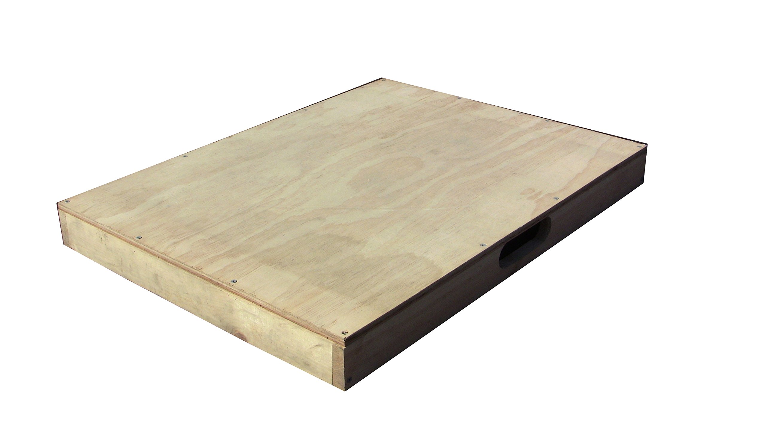 ASPS Dance Board Standard for Clogging Tap Flat Footing w/handle 3 x 24 x 32 in.