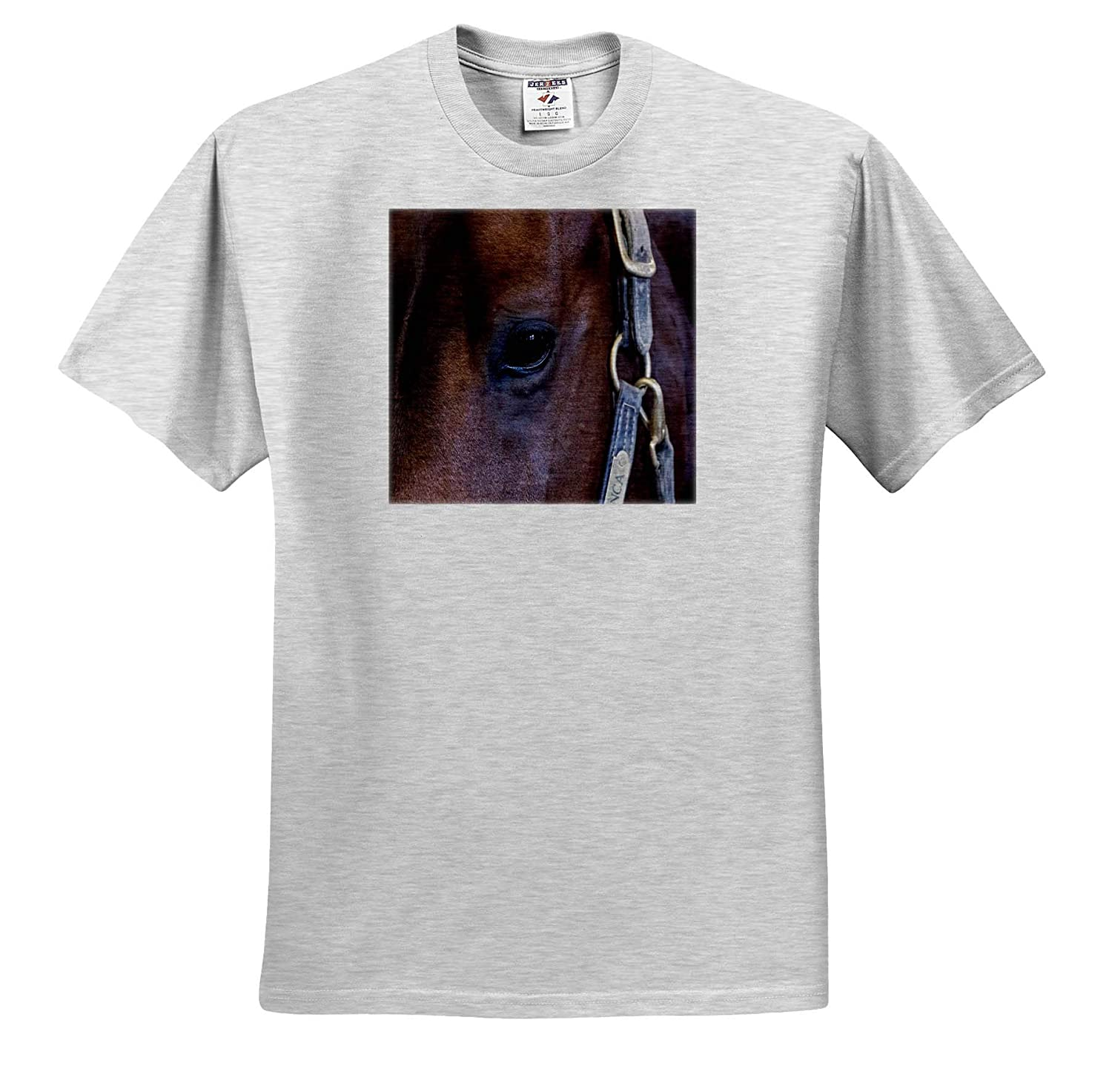 Close up of Horse T-Shirts 3dRose RONI Chastain Photography