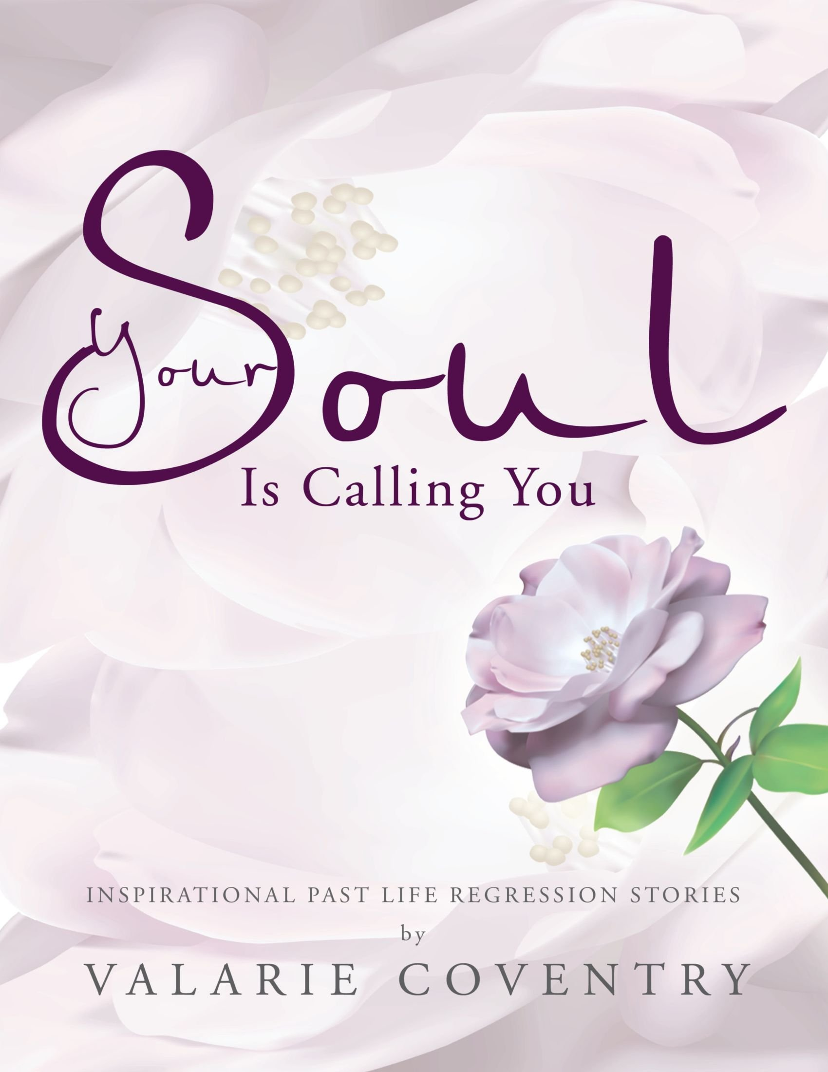 Your Soul is Calling You: Inspirational Past Life Regression Stories ebook