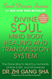 Divine Soul Mind Body Healing and Transmission Sys: The Divine Way to Heal You, Humanity, Mother Earth (Soul Power)