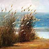 Portfolio Canvas Decor Landscape Classic II Framed and Stretched Wall Art, Large, 35 by 35-Inch
