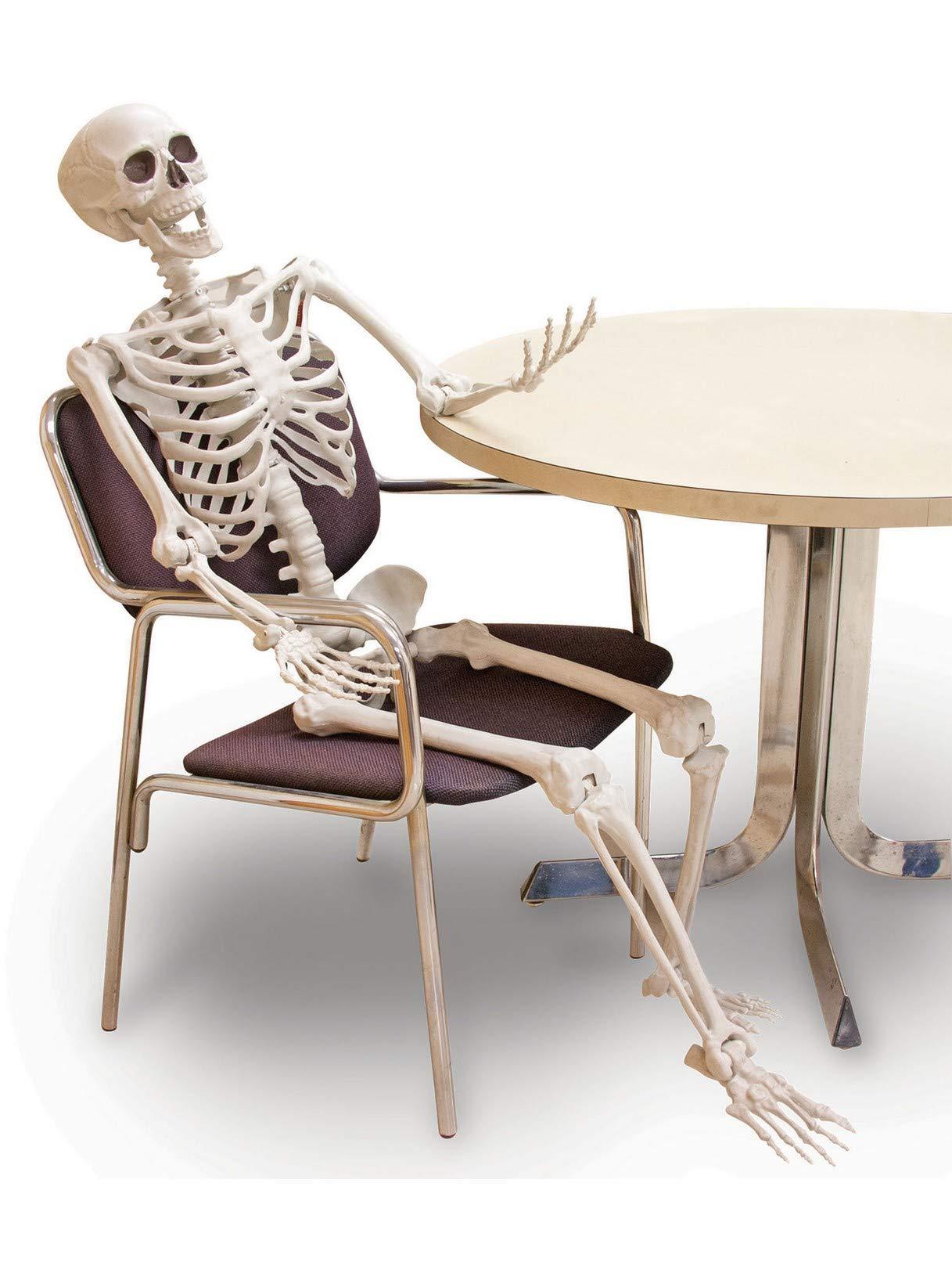 Crazy Bonez Pose-N-Stay Skeleton by Crazy Bonez