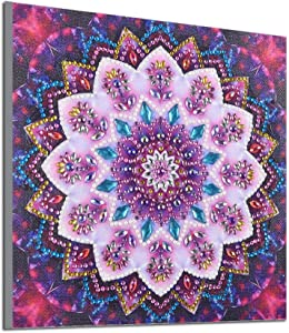 4 Pack 5D DIY Diamond Painting Set Partial Drill Cross Stitch Kits Decorating Cabinet Diamond Embroidery Paintings Pictures Arts Craft, Mandala Flower Painting 9.8X9.8 inch (Red(1 Pack))