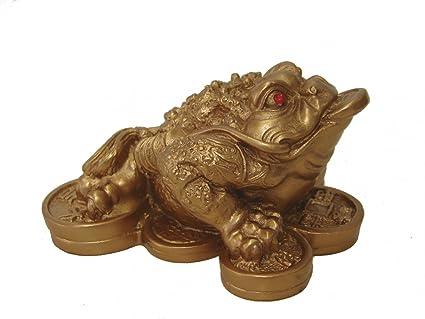 Amazon.com: 1 X Feng Shui Money Frog /Money Toad Attract Wealth ...