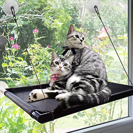 Cat Window Perch Hammock Bed Kitty Sunny Seat Durable Pet With Upgraded Version 4