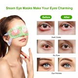 16 Packs Steam Eye Masks, ProCIV Warm Eye Mask, Hot