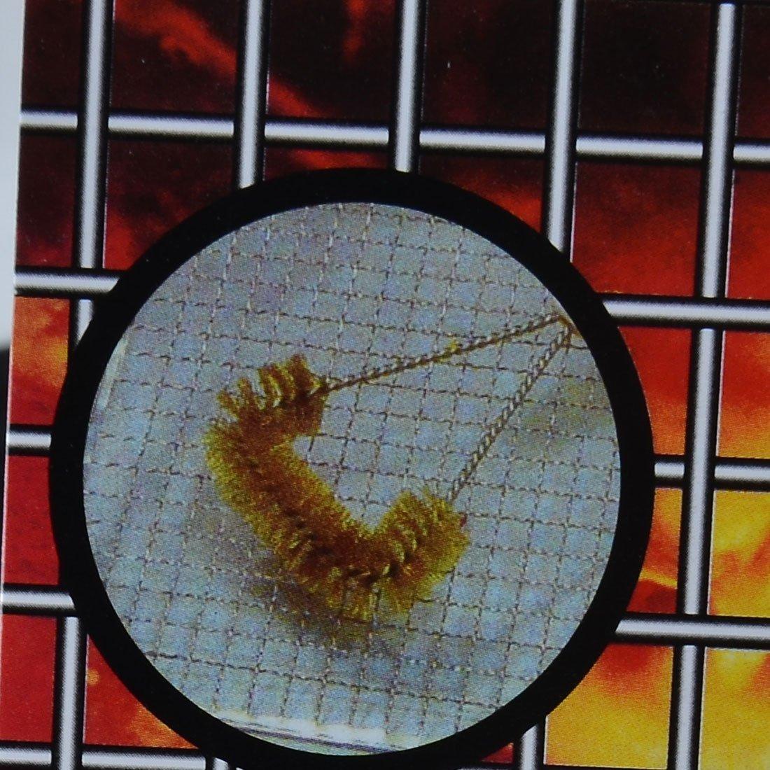 Amazon.com: eDealMax mango de plástico alambre de metal de la parrilla la cuadrícula raspado cepillo de limpieza: Kitchen & Dining