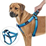 PETBABA No Pull Dog Harness, Front Clip Choke Free Reflective Safe at Night Walking Chest Vest with Martingale Handle on Top Good for Traffic Control Training - L in Blue