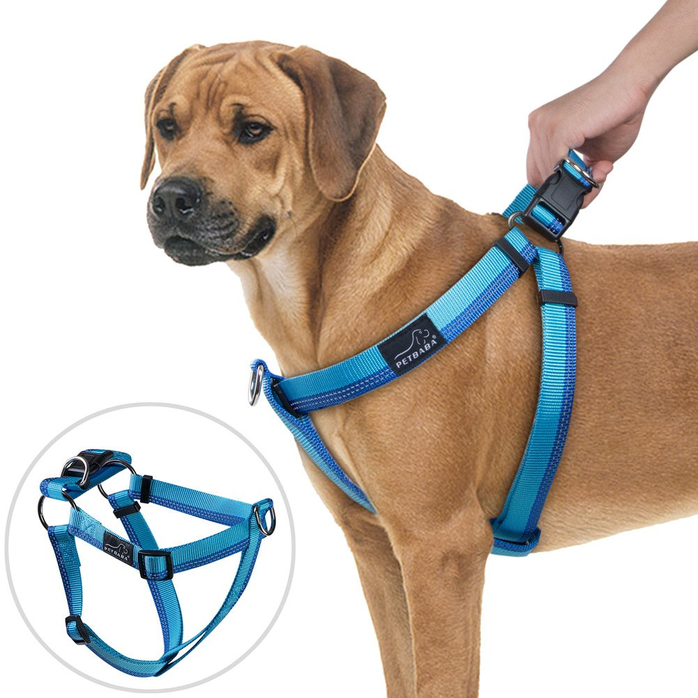 PETBABA No Pull Dog Harness, Front Clip Giving Pet Choke Free Walking, Reflective Safety at Night, Step-in Vest Martingale Handle Nice Controlling in Heavy Traffic - M in Blue