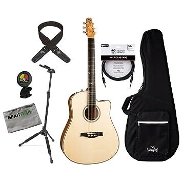 Gaviota 041565 artista Cameo CW elemento acústica guitarra eléctrica con caja de caso, geartree Cable