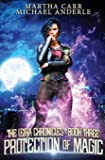 Protection of Magic (The Leira Chronicles)