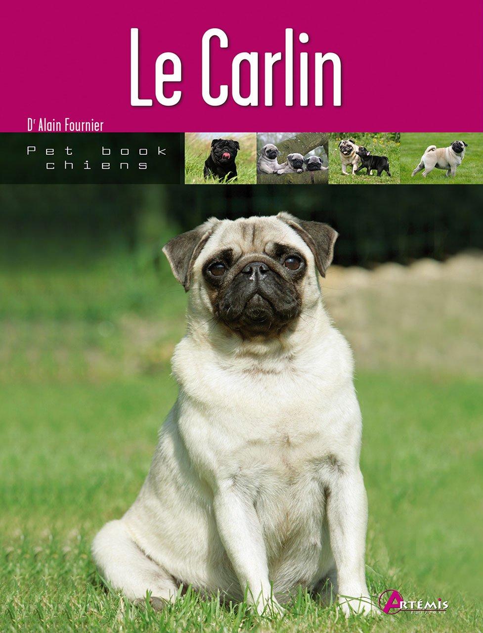 Carlin Broché – 7 janvier 2009 Alain Fournier Editions Artémis 2844167292 9782844167293_DMEDIA_US
