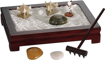 Kit Mini Jardin Zen – Presentoir Lot de 12: Amazon.es: Oficina y papelería