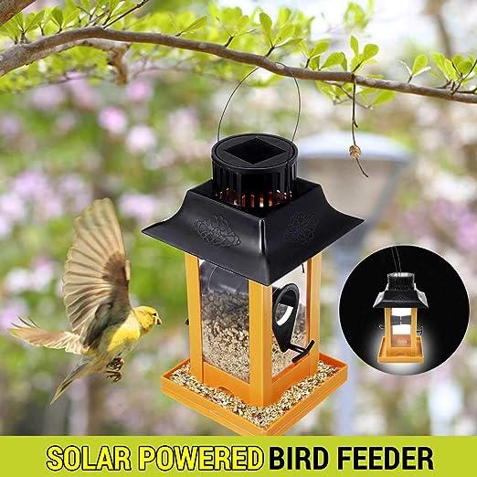 VietFA Comedero para pájaros de la Marca, lámpara LED Colgante ...