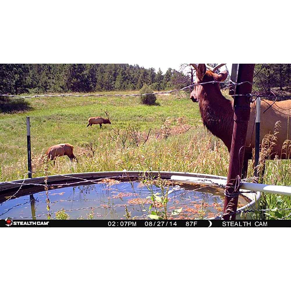 Stealth Cam 14.0 Megapixel 45 No-Glo IR Trail Camera 2 pack bundle by Stealth Cam (Image #7)