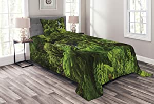 Ambesonne Rainforest Bedspread, Rainforest with Waterfall River Tourist Attraction Tropical Lands Green Theme, Decorative Quilted 2 Piece Coverlet Set with Pillow Sham, Twin Size, Green