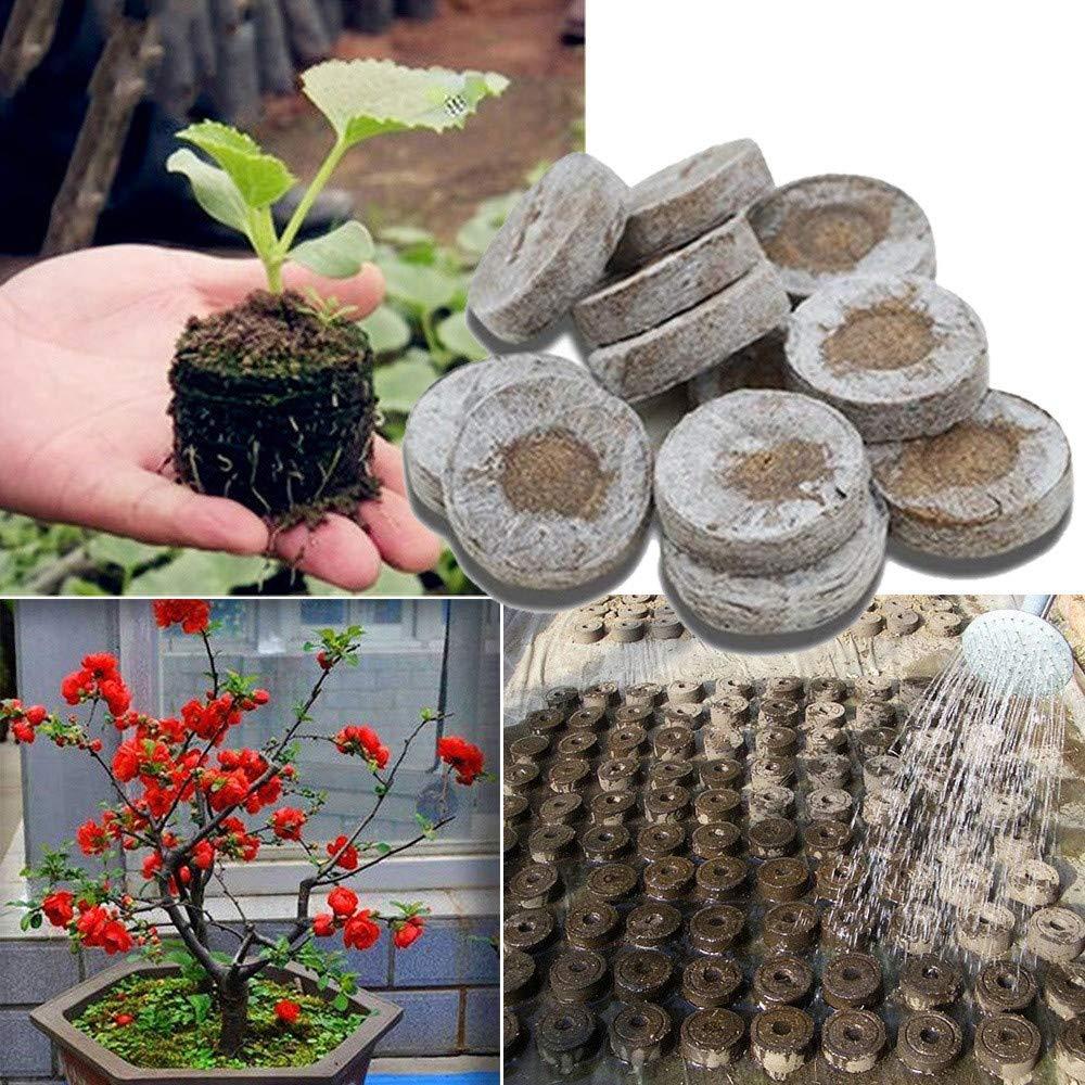 30mm Peat Pellets Seed Starting Plugs Pallet Seedling Soil Block Biodegradable for Garden Plants Flowers (10PCS)