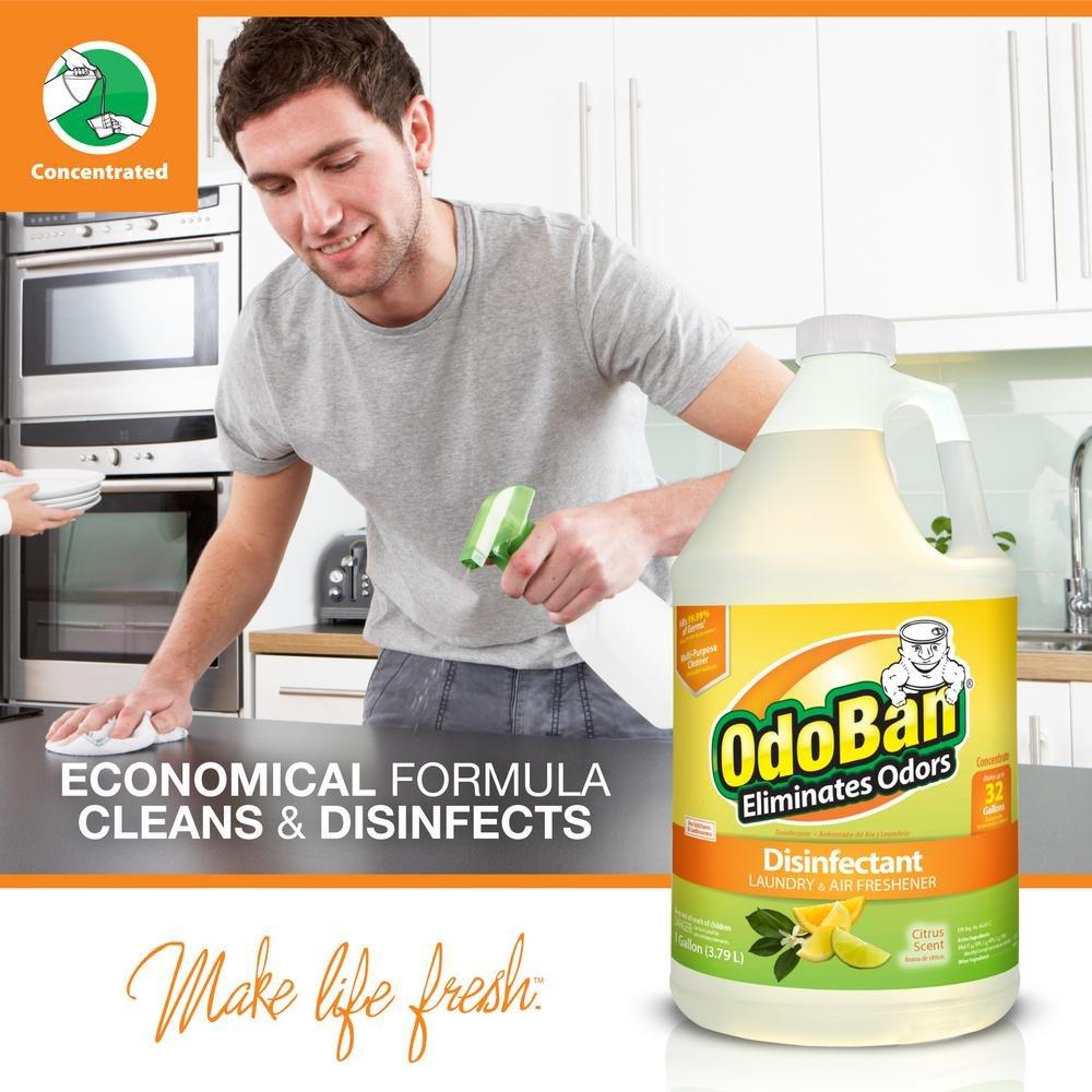 OdoBan 1 Gal Concentrate 2-Pack, Citrus Scent - Odor Eliminator, Disinfectant, Flood Fire Water Restoration by OdoBan (Image #4)