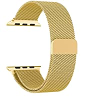 Robustrion Stainless Steel Mesh Milanese Loop Strap, Adjustable Magnetic Closure iWatch Band/Apple Watch Strap