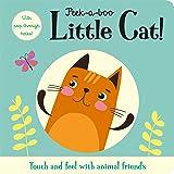 Peek-a-boo Little Cat! (Peep-through Window Books)