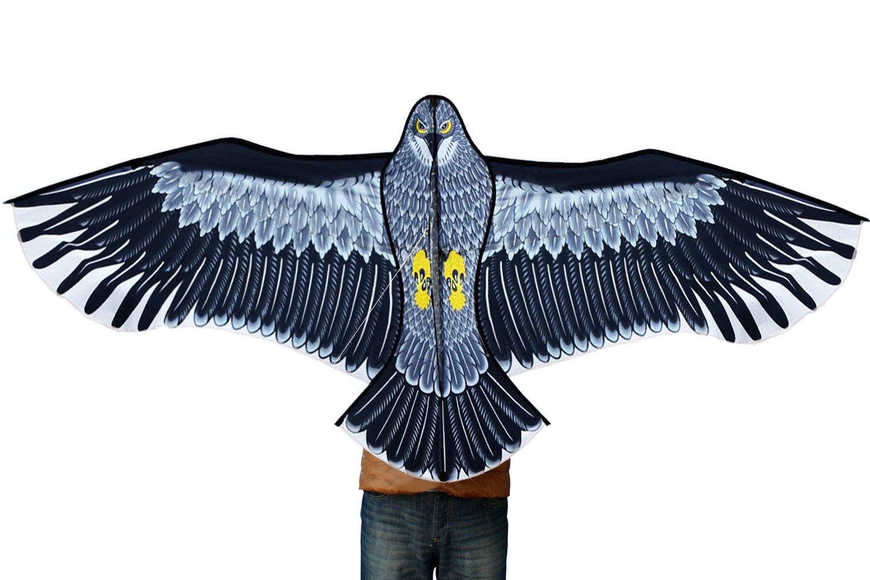 Hengda Kite-Strong Eagles!Huge beginner eagle kites for Kids and Adults.74-Inch by Hengda kite by HENGDA KITE (Image #2)