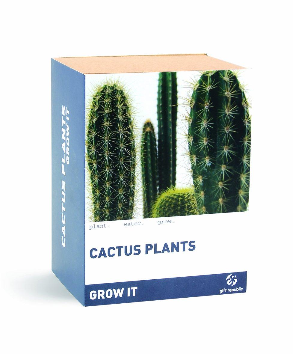 Gift Republic Grow It Geschenkset Kaktus-Pflanzset GR200003