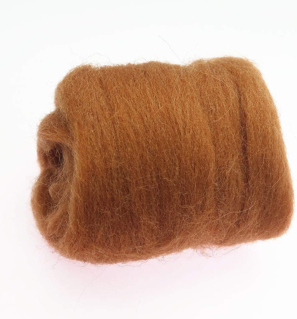 Homyl 10g Wool Corriedale Top Roving Wool Fibre Yarn Roving Needle Felting Craft Brown
