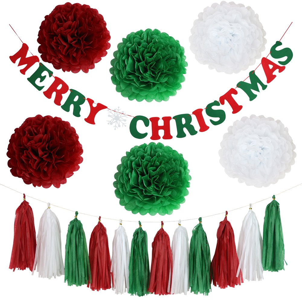 YoTruth 19pcs Christmas Paper Party Decorations for Party Indoor and Outdoor Include White Red Green Tissue Pom-poms Flowers Festival Banner