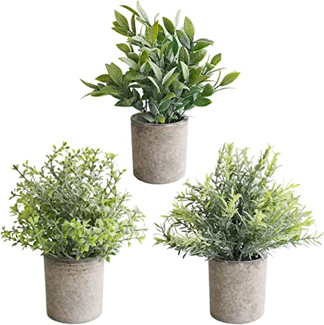 Amazon Com The Bloom Times Set Of 3 Small Artificial Plants In Pots For Home Decor Indoor Mini Fake Greenery Faux Potted Plants For Farmhouse Bathroom Office Desk Tabletop Shelf Decoration Kitchen