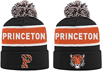 reputable site cb37f f350a Top of the World Princeton Tigers Adult NCAA Radius Knit Beanie - Team  Color,