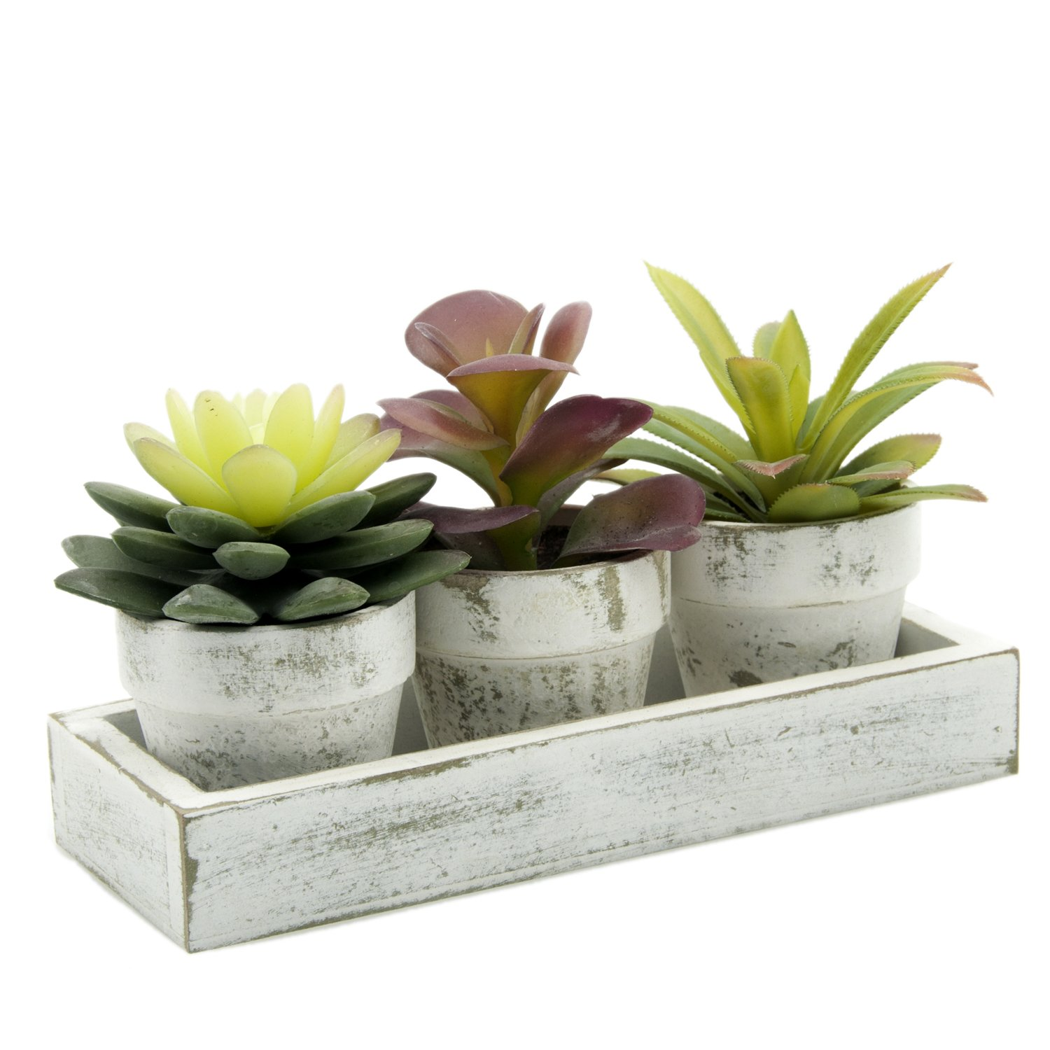 Velener Mini Artificial Succulent Plants with White Wooden Tray for Home Decor (Red, Green, Set of 3) by Velener