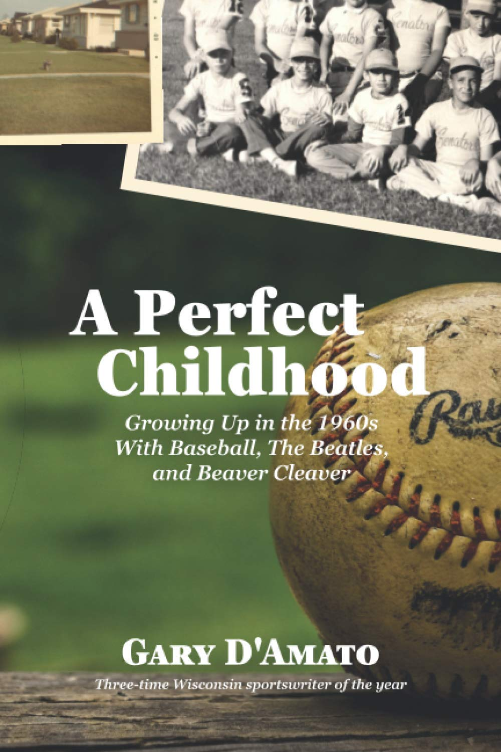 Amazon.com: A Perfect Childhood: Growing Up in the 1960s with Baseball, The  Beatles, and Beaver Cleaver (9798688779608): D'Amato, Gary, Hoffman, Paul  J., Haines, John: Books