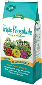 Espoma TP6 Triple Phosphate Fertilizer, 6.5-Pound