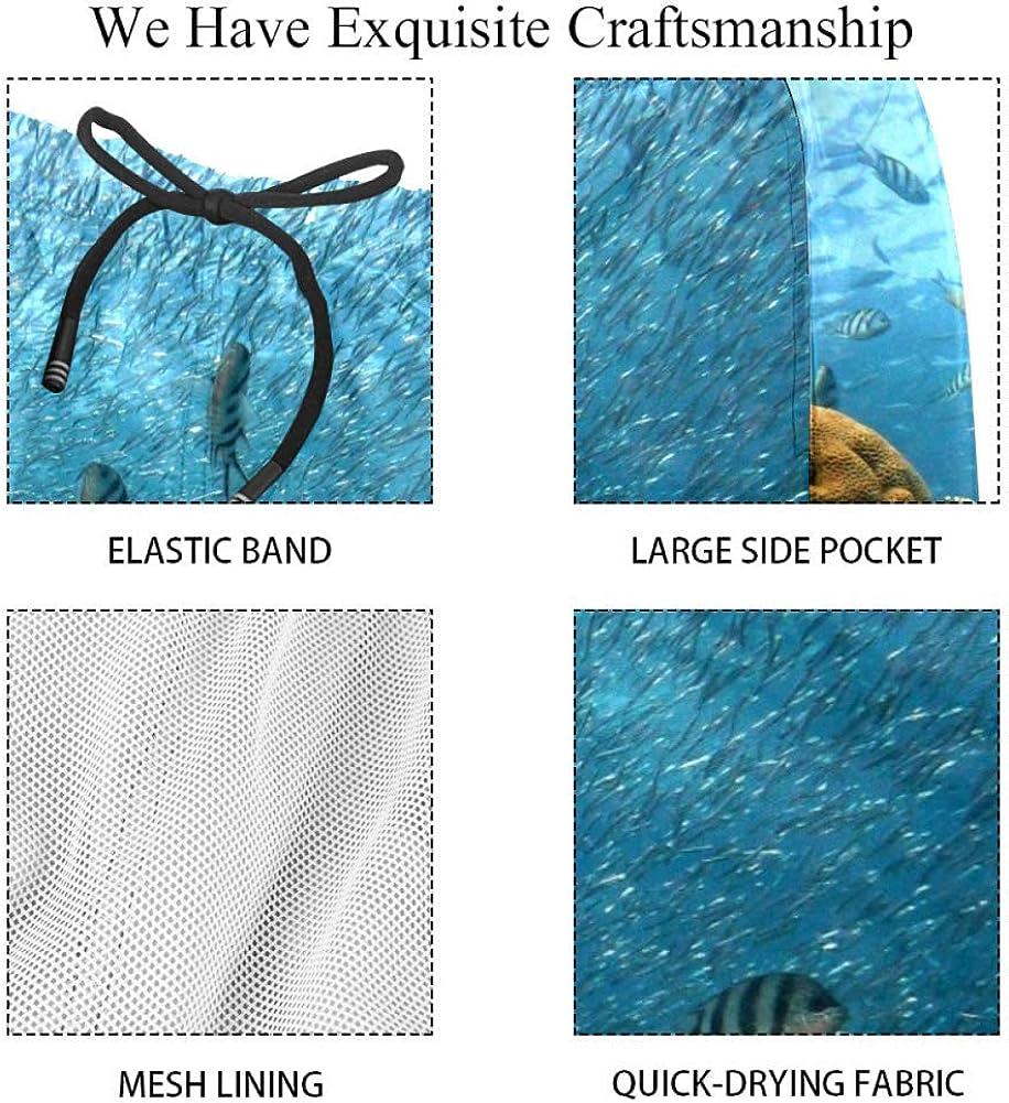 AISSO Fish Mens Swim Shorts 3D Print Swimming Trunks Beach Shorts with Mesh Lining