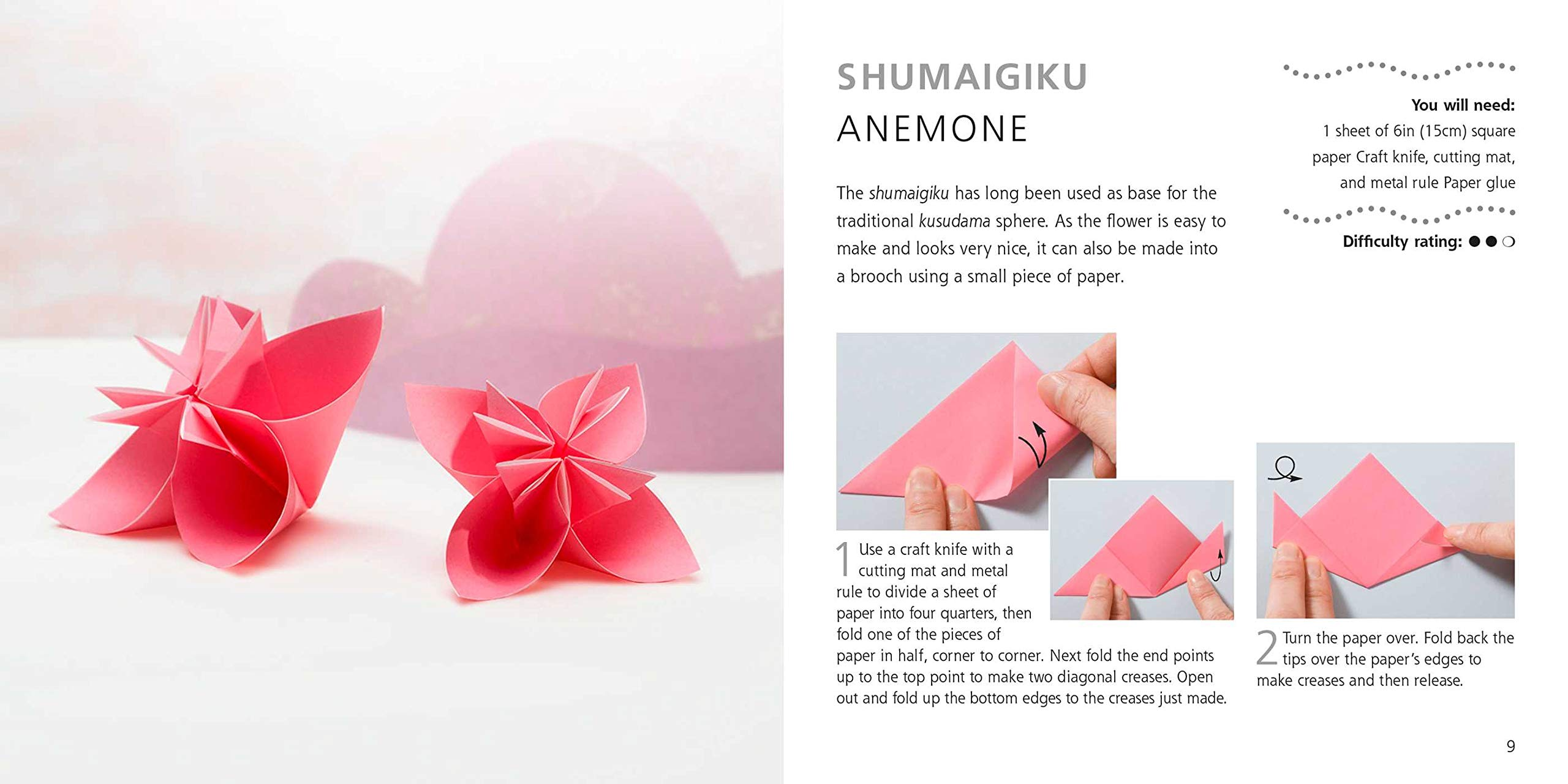 PPT - Origami Flower Instructions PowerPoint Presentation, free download -  ID:6203379 | 1280x2560