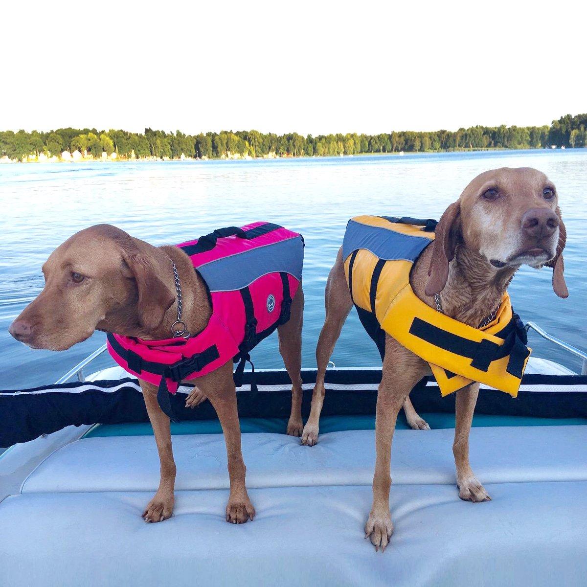 VIVAGLORY Chaleco Salvavidas para Perros con Flotador Delantero Perros Seguridad Nataci/ón Ropa