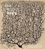 #4: Beautiful Brain: The Drawings of Santiago Ramon y Cajal