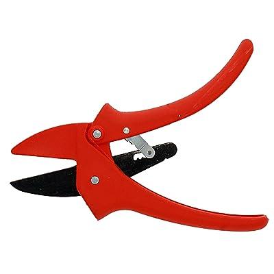 Zenport ZR110 Fiberglass Ratchet Pruner, 8.5-Inch : Hand Pruners : Garden & Outdoor