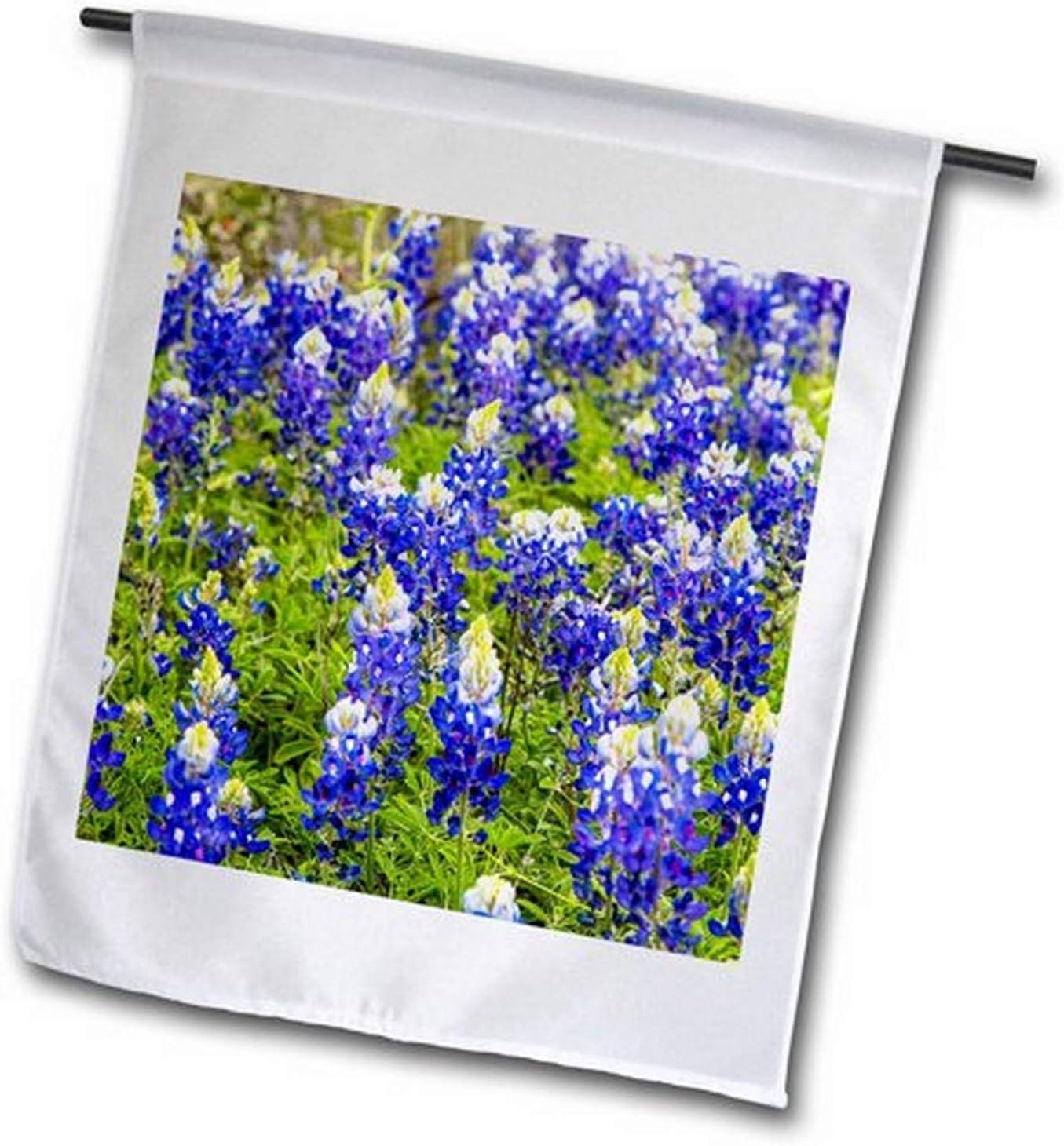 3dRose fl_190031_1 Bluebonnet Flowers Near Willow City, Texas, USA Garden Flag, 12 by 18