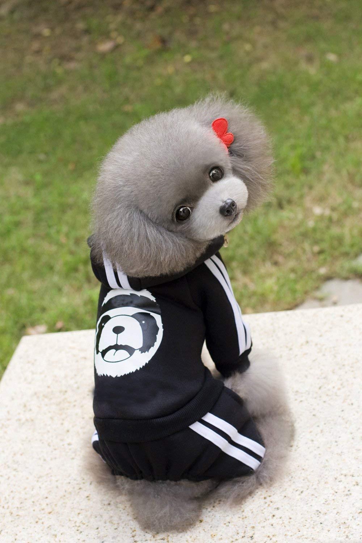 Black XL Black XL Party Pet Costume Pet Supplies Misc Pet Clothing Dog Clothes Autumn and Winter pet Clothes Violent Bear Four-Legged Sweater (color   Black, Size   L) Pet Uniform (color   Black, Size   XL)