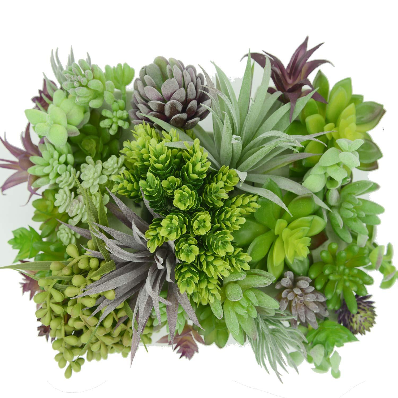 Finch Home Products 30ピース + 5ボーナスアクセントピース リアルなフェイク多肉植物。 【まとめ買いセット】 人工多肉植物/人工植物 装飾工芸用 B07JR9JZ9F