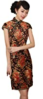 AvaCostume Women's Pleuche Chinese Flare Floral Print Qipao Dress
