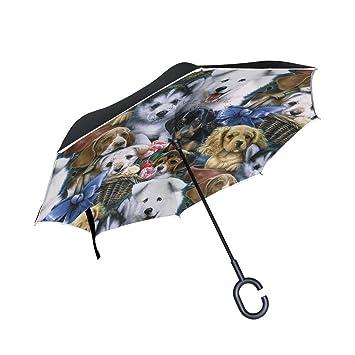 OKONE - Paraguas Reversible de Apertura automática con Varios Paraguas compactos y Rectos para Coche y