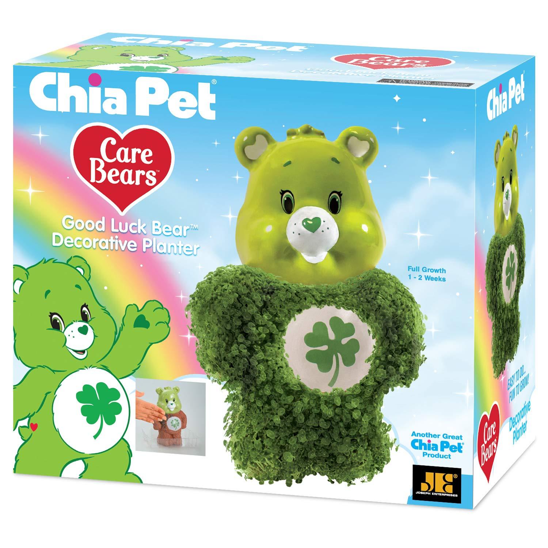 Chia Pet Care Bear Decorative Pottery Planter Good Luck