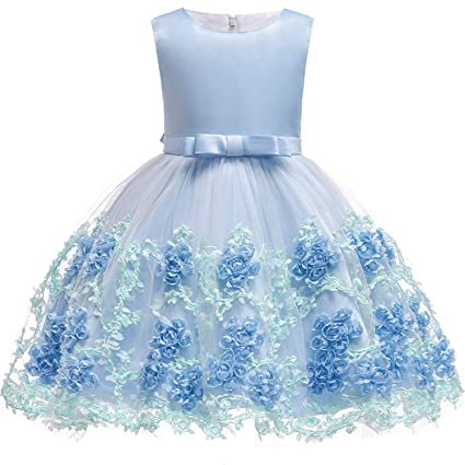 87f0878fa3c0 Image Unavailable. Image not available for. Color: Baby Embroidered Formal  Princess Dress for Girl Elegant Birthday Party ...