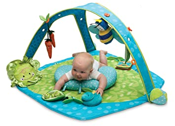 Superieur Boppy EntertainMe Play Gym, Garden Patch (Discontinued By Manufacturer)